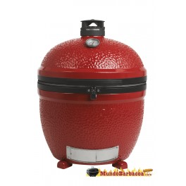http://mundobarbacoa.com/1324-thickbox_default/barbacoa-kamado-joe-big-joe-stand-alone.jpg