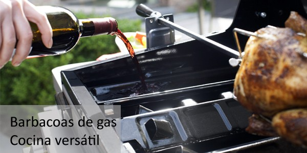 Barbacoas de Gas